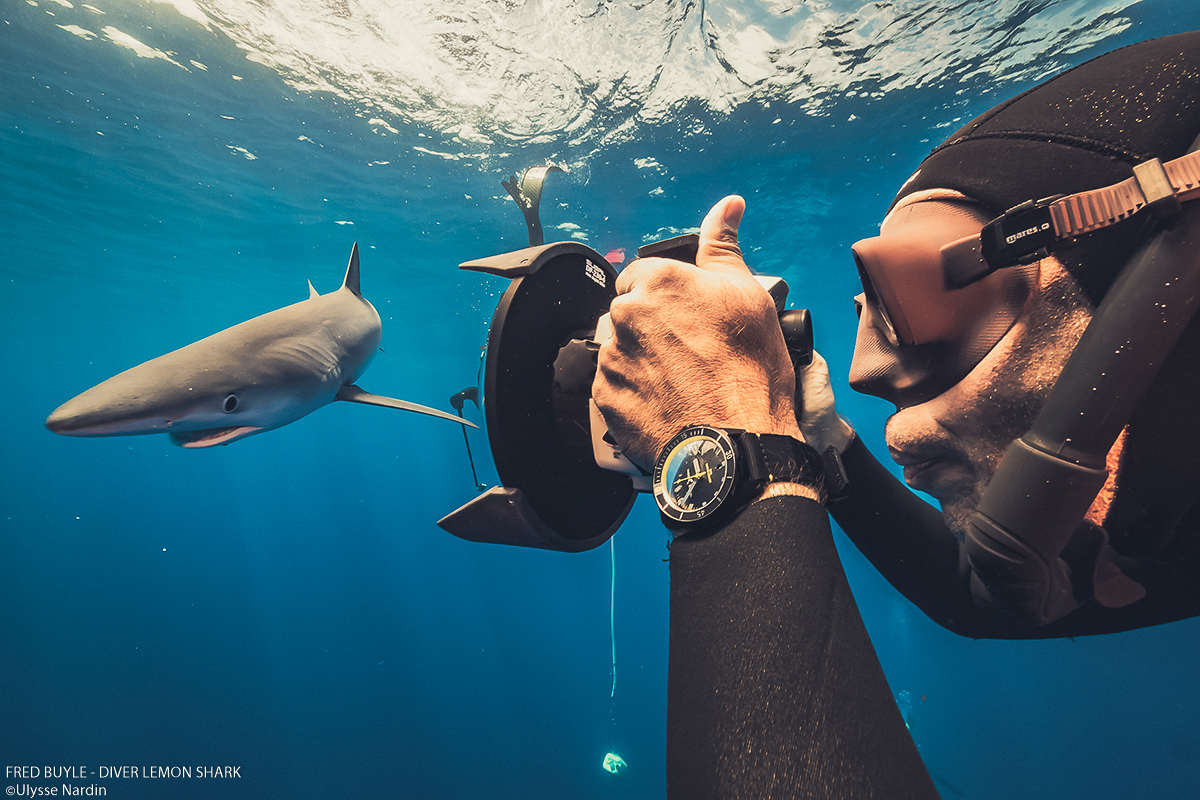 Ulysee Nardin – THE NEW DIVER LEMON SHARK – World's Ocean Day